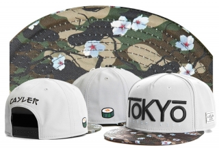 Cayler & Sons Snapbacks - TY (1)