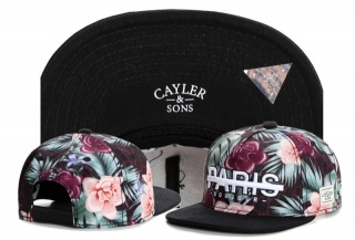 Wholesale Cayler & Sons Snapbacks Hats - TY (52)