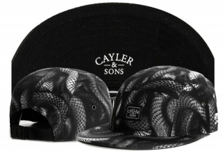 Wholesale Cayler & Sons Snapbacks Hats - TY (78)
