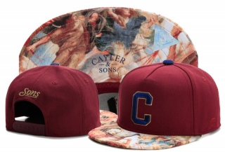 Wholesale Cayler & Sons Snapbacks Hats - TY (79)