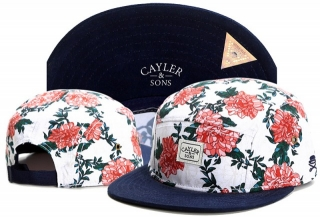 Wholesale Cayler & Sons Snapbacks Hats - TY (125)