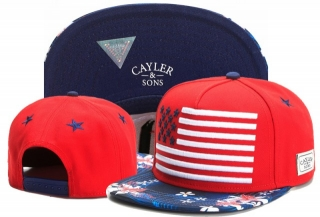 Wholesale Cayler & Sons Snapbacks Hats - TY (144)
