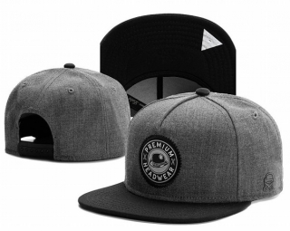 Wholesale Cayler & Sons Snapbacks Hats - TY (158)
