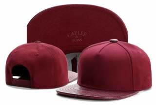 Wholesale Cayler & Sons Snapbacks Hats - TY (175)