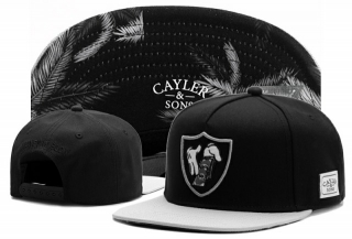 Wholesale Cayler & Sons Snapbacks Hats - TY (189)